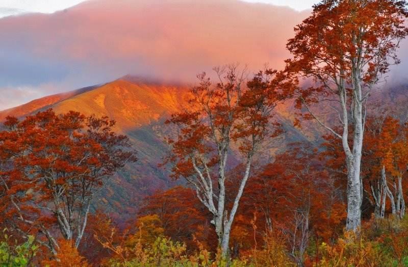 月山の朝焼け