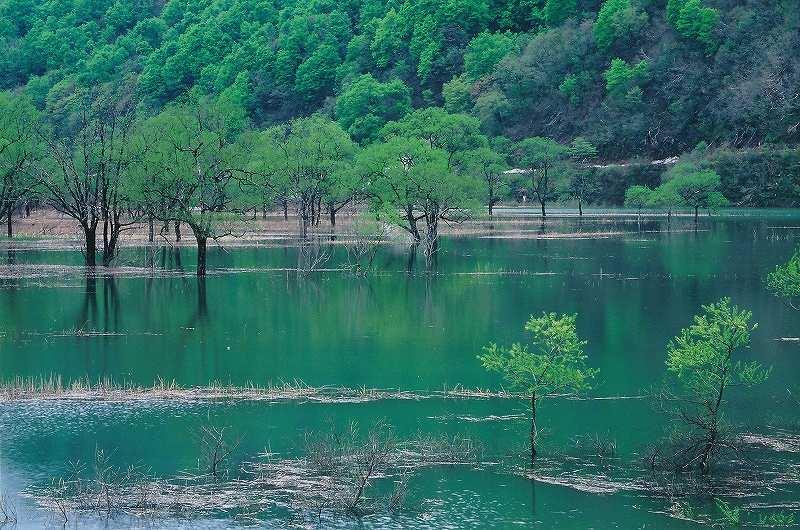 湖畔の風景(荒沢ダム)